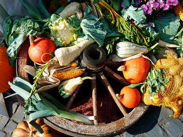vegetables-1695831_640
